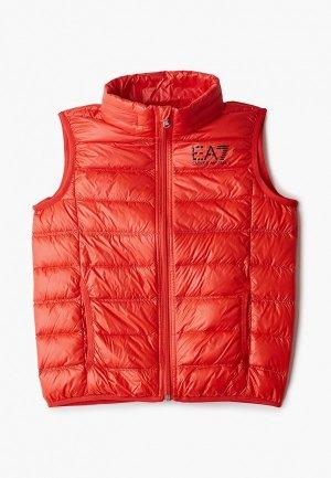 Жилет утепленный EA7. Цвет: красный