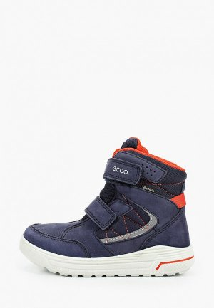 Ботинки Ecco URBAN SNOWBOARDER. Цвет: синий